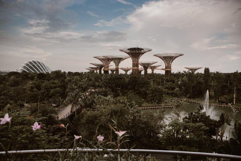 Un week-end à Singapour gardens by the bay