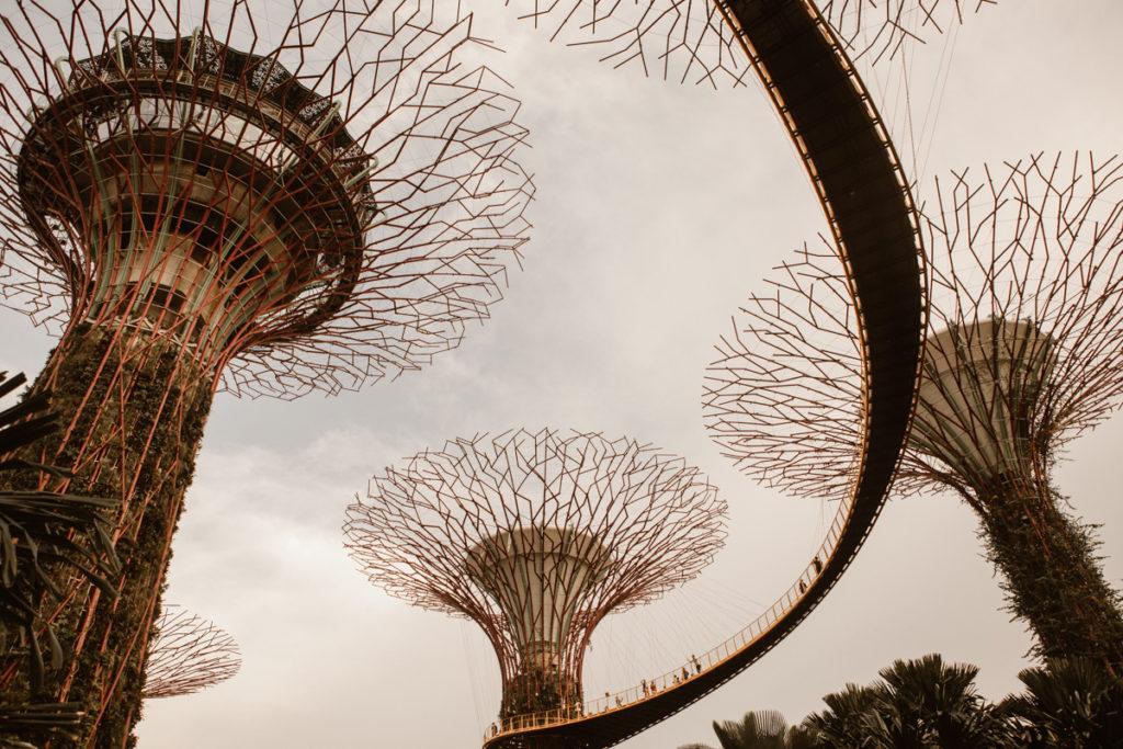 Un week-end à Singapour gardens by the bay vu de dessous