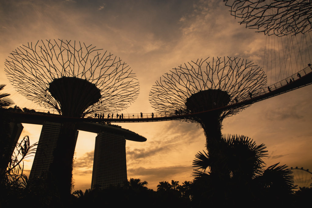 Un week-end à Singapour gardens by the bay at sunset
