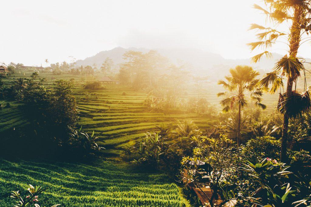 10 jours à Bali