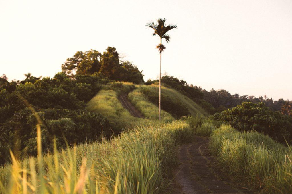 blog voyage asie bali