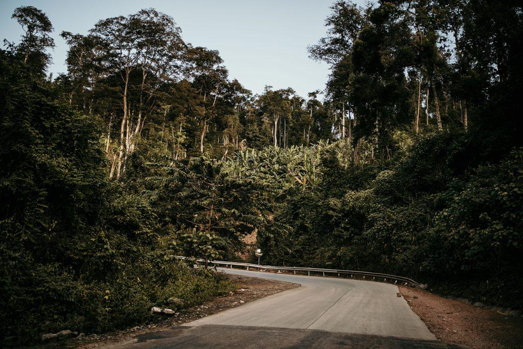La Boucle de Thakhek route forêt