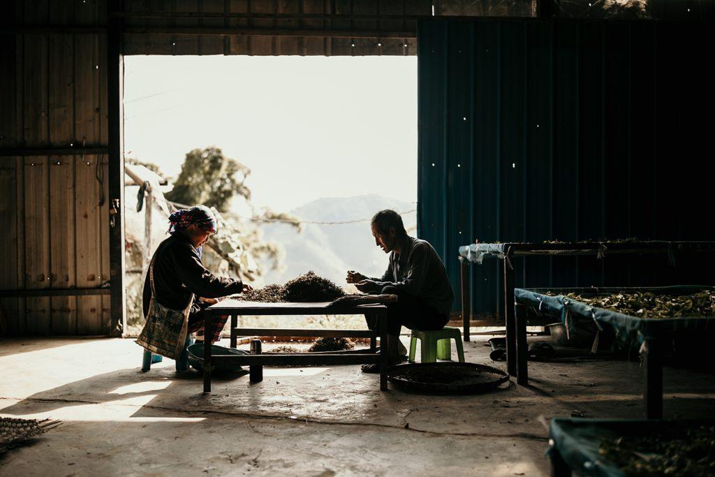 visiter phongsali et ses environs Ban Namleng