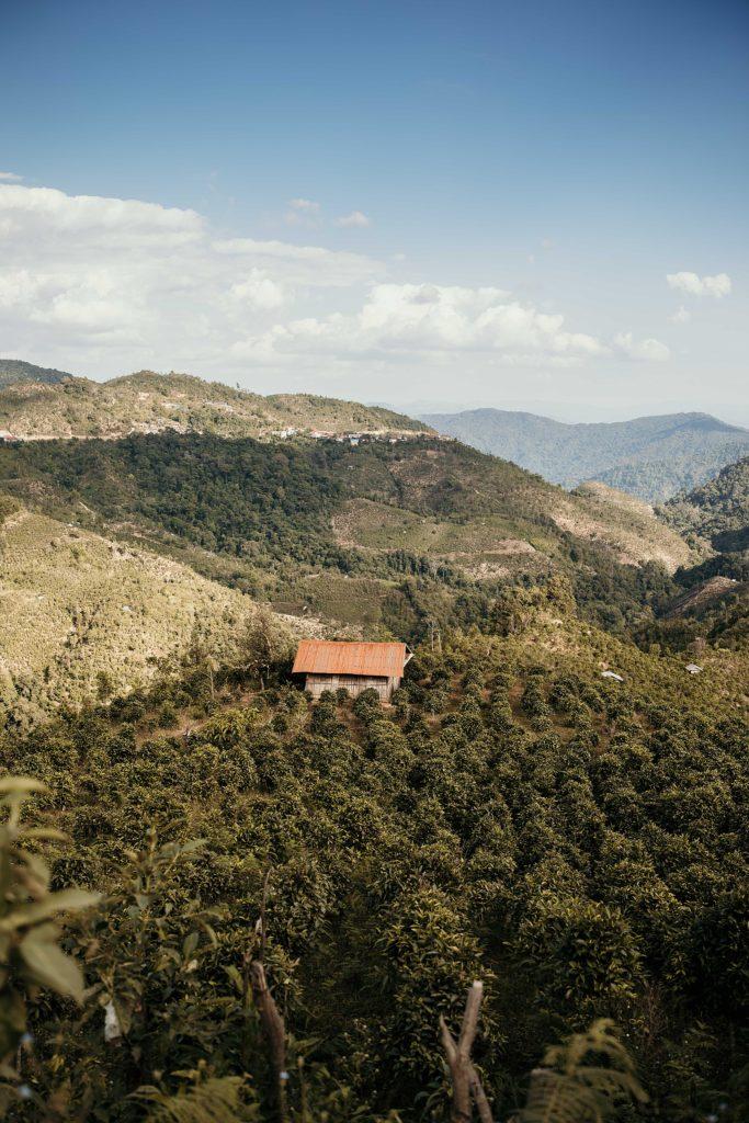 visiter phongsali et ses environs paysages laos